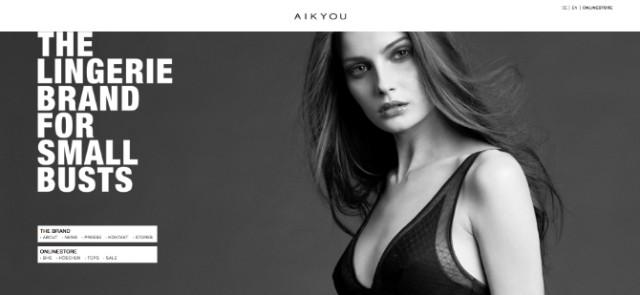 Screenshot - Neue AIKYOU Webseite